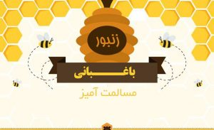 اینفوگرافیک زنبور